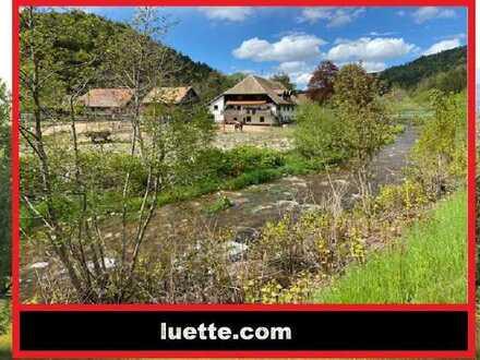 KEINE KÄUFERMAKLERGEBÜHR! Schwarzwald-Idyll, eingebettet i. Bachlauf, Naturlandschaft, Pferdehalt...