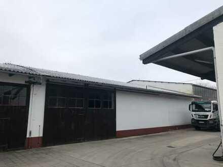Gewerbliche Lagerhalle in Stein-Bockenheim