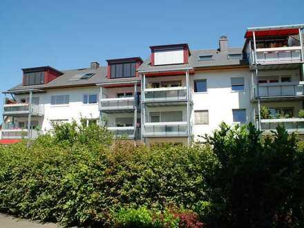 Vollständig renovierte 2-Zi-Wohnung mit Balkon in Gundelfingen