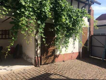Idyllisches Anwesen mit Scheune und Stallungen in Dierbach