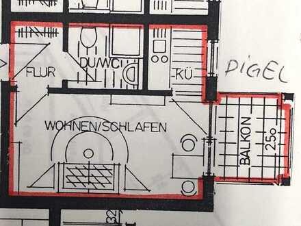 Geschmackvolle 1-Raum-Wohnung mit Balkon und EBK in Ofterdingen