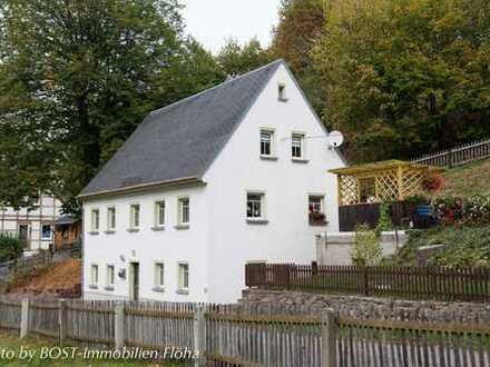 Kleines Häuschen in Hennersdorf 2* Kaminofen