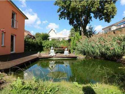 Schöne Single/Paar Wohnung in Marienthal mit Dachterrasse + Kamin + Einbauküche