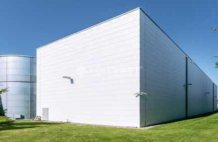 NEUBAU - Hochmoderne Produktions-, Lager- und Gewerbehallen in Flughafennähe Leipzig-Altenburg