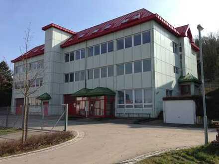 225 m² EG-Gewerbeeinheit mit Büro/Lager/Halle für Handel, Vertrieb, Service