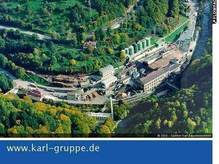 Industrie- und Gewerbeflächen Forbach/Wolfsheck
