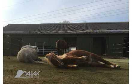 Jever-3075D *Ihr eigener Pferdehof* mit allem was dazu gehört