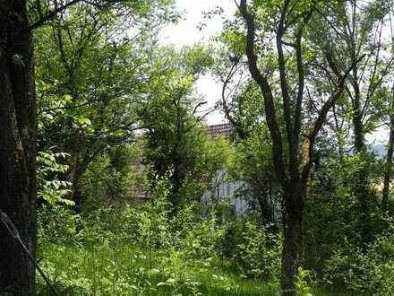 Inmitten malerischer Landschaft - Bauplatz, unerschlossen in Rechberg