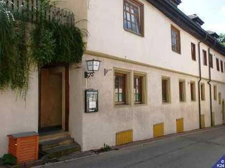 HoGi ® PROVISIONSFREI - Phoenix, der Irish Pub in Lauffen am Neckar