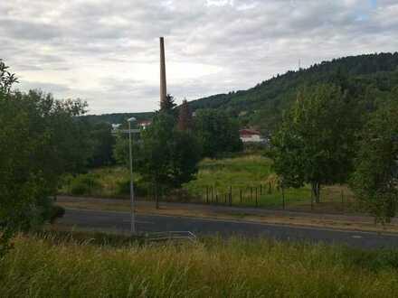 Gewerbegrundstück mit ca. 6.000 m² in Eisenach zu verkaufen!