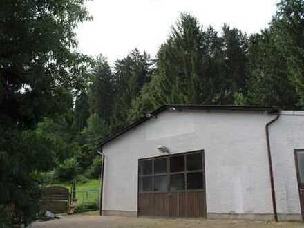 Gewerbe-Halle und großes Wohnhaus in einem!