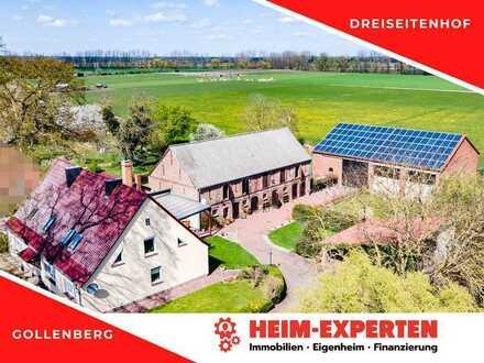 Moderner Dreiseitenhof mit viel Platz für Familie, Hobby und Tiere in Gollenberg
