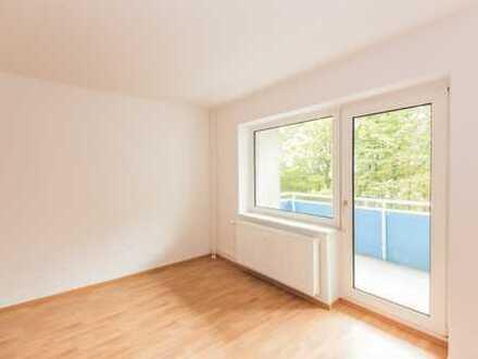 Renovierte 3-Zimmer-Wohnung! Perfekt für die kleine Familie + 50%Rabatt auf die NKM*!