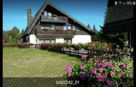 Helle 2 Zimmer-Wohnung mit Einbauküche und Balkon