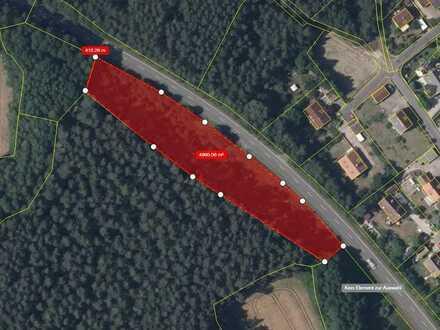 Waldgrundstück direkt an der Staatsstraße Althaidhof-Prebitz