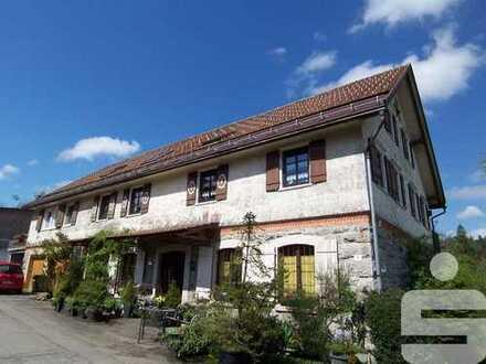 3-Zimmer-Wohnung mit Extra Räumen in Weiler-Simmerberg