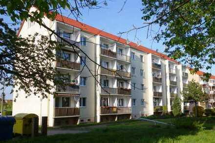 Schicke renovierte 3- Raum-Wohnung in schöner Lage mit Stellplatz