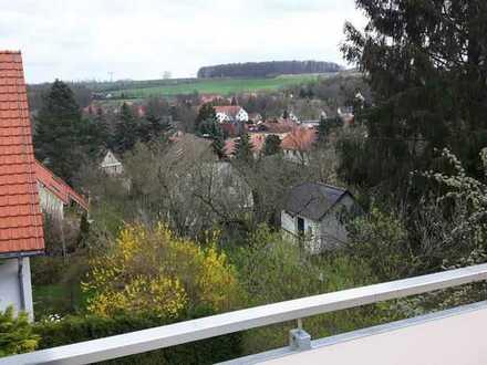 Vollständig renovierte Wohnung zwei Zimmer sowie Balkon und EBK in Dresden