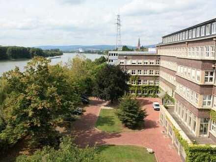 Bürofläche, hochwertig, top saniert, mit direktem Rheinblick, Service-Angebot, PROVISIONSFREI