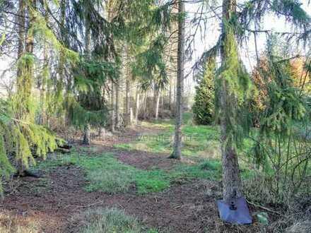 Schnäppchenpreis: Großes Freizeitgrundstück in idyllischer und naturnaher Lage in Großenkneten!
