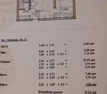 Teilmöbilierte vollständig renovierte 1-Zi-Wohnung mit Balkon und Einbauküche in Birkenheide