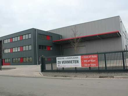 Industrie-, Produktions-, Lager-, Gewerbehalle, mit Büroflächen 1500/2550 m²
