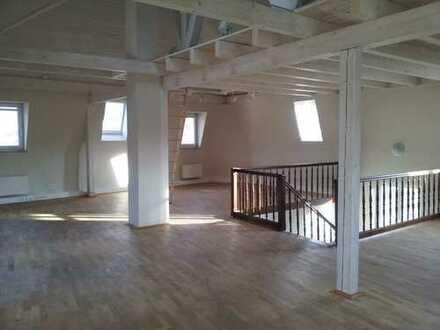 Sanierte 1-Zimmer-Loft-Wohnung mit Einbauküche in Annweiler