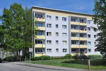 Grüner geht´s nicht: Waldstadt I