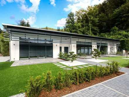 Dahn/Hinterweidenthal Neubau: exkl.Wohnung