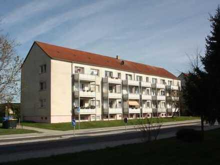 Attraktive 2-Zimmer-Erdgeschosswohnung in Sonnenwalde, Elbe-Elster