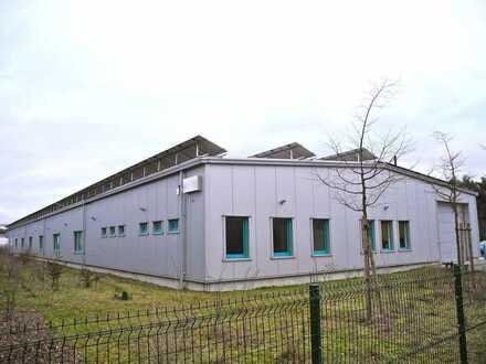 Ganz moderne Gewerbefläche für Produktion, Werkstatt, Lager, Logistik oder Großraumbüro in Cottbuser