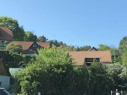 Charmante, Kernsanierte 3 Zimmer Wohnung mit 270 m2 Garten