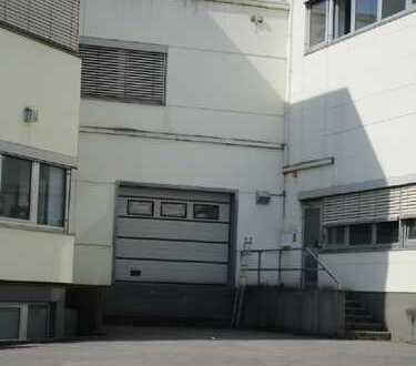 3.390 m² Halle im 1. Obergeschoß gut belichtet COURTAGEFREI