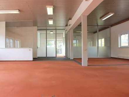 Großzügige Bürofläche in Lauingen zu vermieten!