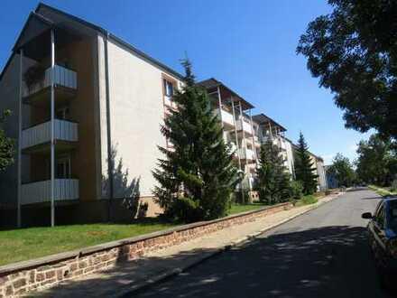 Einzugsfertige 3 Raum- Wohnung mit Balkon in Bitterfelder Anhaltsiedlung