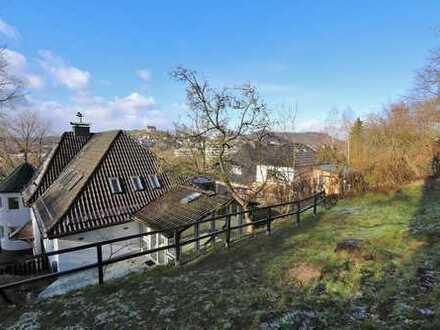 Modernisierte 3-Zimmerwohnung mit Schlossblick am Ortenberg!