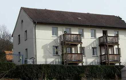 gemütliche 3 ZKB mit Balkon sucht Sie!