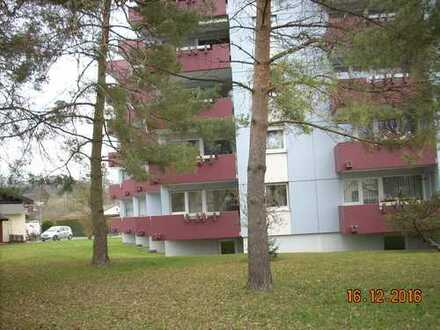2 1/2 Zimmerwohnung mit 2 Balkonen im Hochparterre
