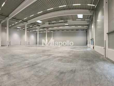 Vielseitig nutzbare Hallenfläche  verkehrsgünstig gelegen   5 m UKB