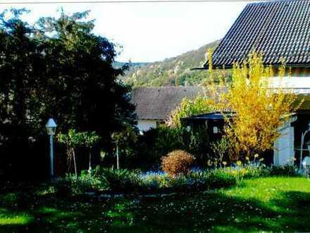 Breuberg - Villa zum Wohnen und Arbeiten mit Galerie, Schwimmbad und Sauna, großzügig und gepflegt