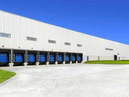 PROVISIONSFREI: ca. 40.000 qm Neubau Logistik   mehrere Rampen   12 m UKB !