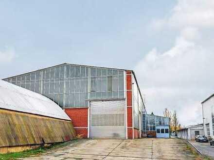 Lagerhalle in Pirna zur MIETE +++ Rund 1.800 m²