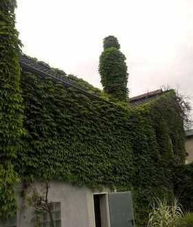 3 Zimmerwohnung im 1. OG in Gelsenkirchen-Erle ab sofort zu vermieten
