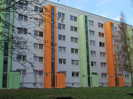 3 Kaltmieten frei*: Wohnung mit Aufzug für die kleine Familie