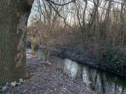 Traumgrundstück mit Flusszugang