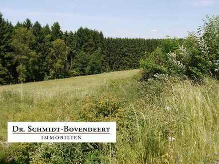 Tolles Grundstück in leichter Hanglage - zwischen Bad Marienberg und Hachenburg!