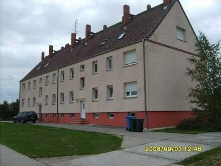 1-Raum-Wohnung in ländlicher Umgebung, familiär und ruhig