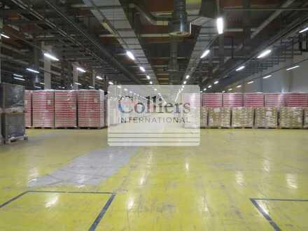 Hallen- und Lagerflächen | ca. 3.700 m² Lagerfläche | Bitterfeld-Wolfen