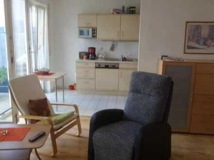 Helles 1-Zimmer-Apartement mit großer Terrasse