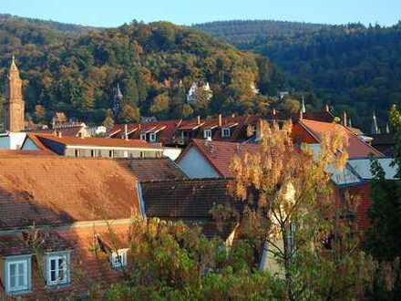 Geräumige 1-Zimmer Wohnung mit Einbauküche in Heidelberg-Altstadt